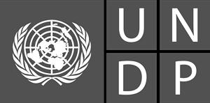 undp-logo-5682674D5C-seeklogo.com